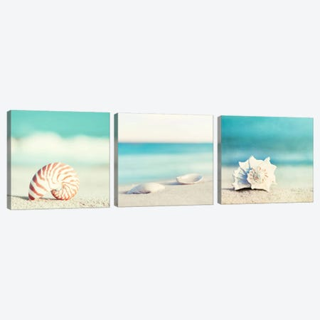 Paradise Triptych Canvas Print Set #ICS3HSET004} by Carolyn Cochrane Canvas Wall Art