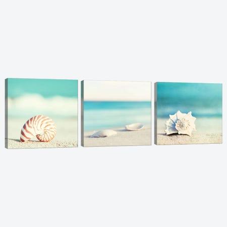 Paradise Triptych Canvas Print Set #ICS3HSET004} by Carolyn Cochrane Canvas Wall Art