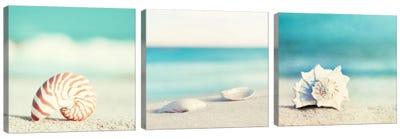 Paradise Triptych Canvas Art Print