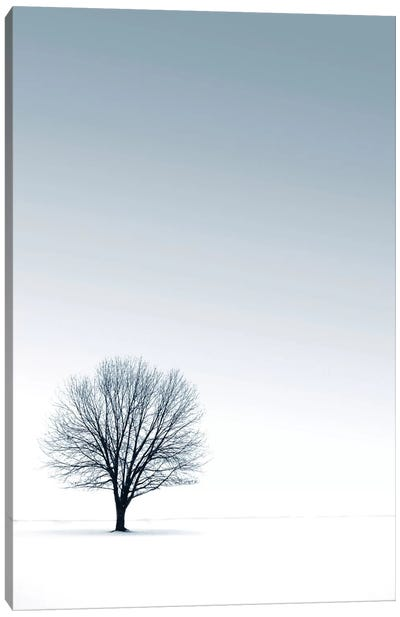 Tree in Winterscape Canvas Art Print
