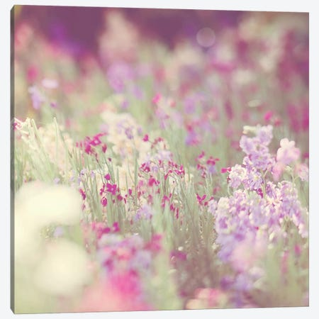Monet Canvas Print #ICS447} by Myan Soffia Canvas Art Print