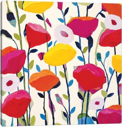 Bursting Poppies Canvas Print #ICS454