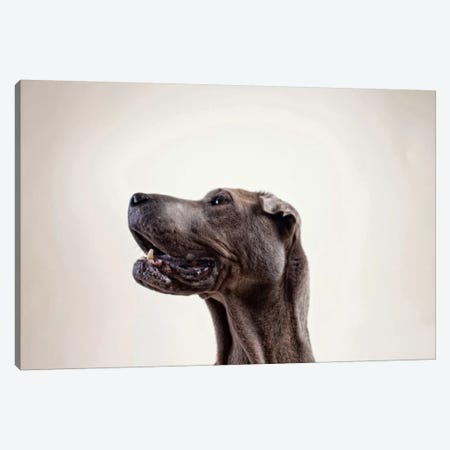 Pelei in Profile Canvas Print #ICS461} by Susan Sabo Canvas Wall Art