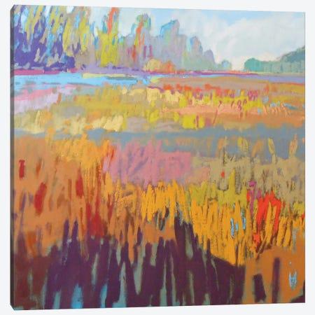 Colorfield XXII Canvas Print #ICS465} by Jane Schmidt Canvas Art Print