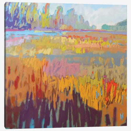 Colorfield XXII Canvas Print #ICS465} by Jane Schmidt Canvas Art Print
