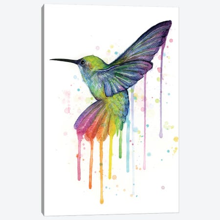 Rainbow Hummingbird Canvas Print #ICS556} by Olga Shvartsur Canvas Print