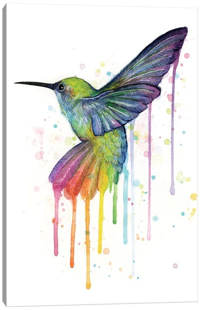 Rainbow Hummingbird Canvas Art Print