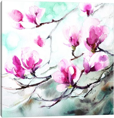Magnolia Spring Canvas Art Print