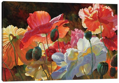Summer Radiance Canvas Art Print