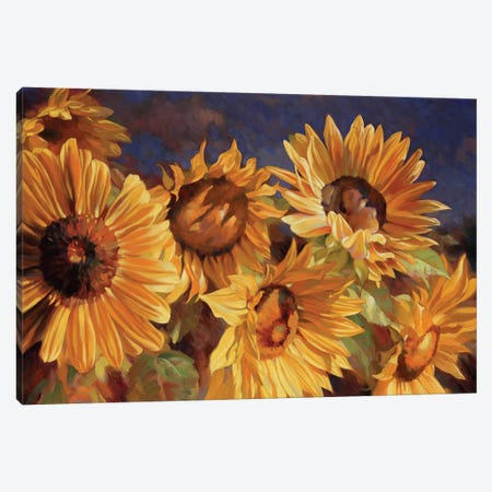 Sunflower Canvas Print #ICS571} by Emma Styles Canvas Art