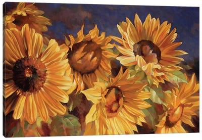 Sunflower Canvas Print #ICS571