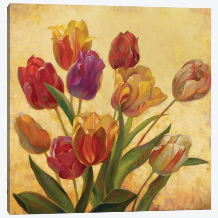 Tulip Bouquet Canvas Print #ICS572} by Emma Styles Canvas Art