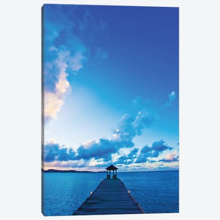 Dock Canvas Print #ICS588} by Lorne Resnick Canvas Art Print