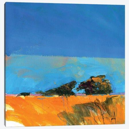 Retracing My Steps Canvas Print #ICS592} by Paul Bailey Canvas Wall Art