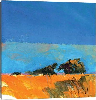 Retracing My Steps Canvas Art Print