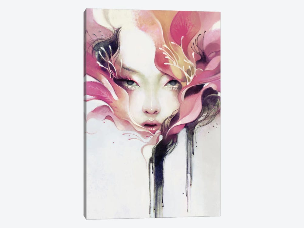 Bauhinia by Anna Dittmann 1-piece Canvas Print