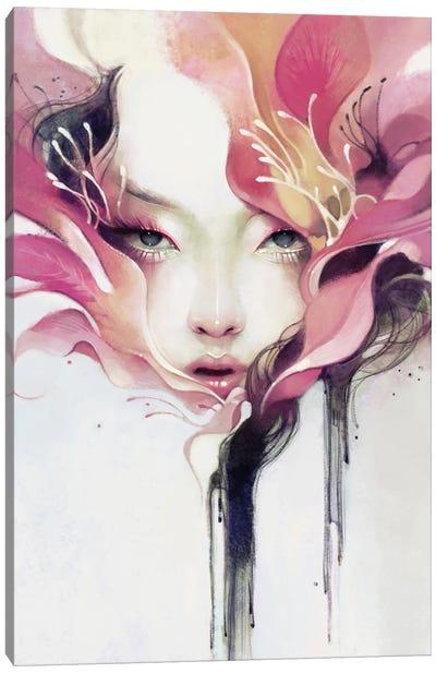 Bauhinia Canvas Art Print