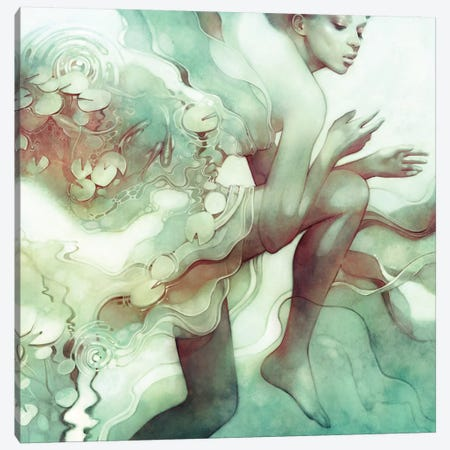 Flood Canvas Print #ICS606} by Anna Dittmann Canvas Art Print