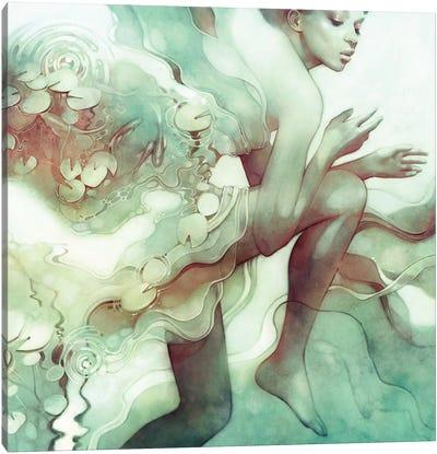 Flood Canvas Art Print