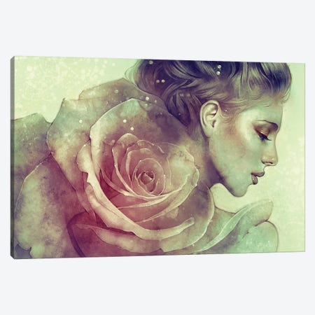 June Canvas Print #ICS608} by Anna Dittmann Canvas Wall Art
