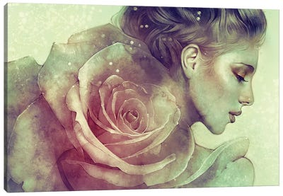 June by Anna Dittmann Canvas Wall Art
