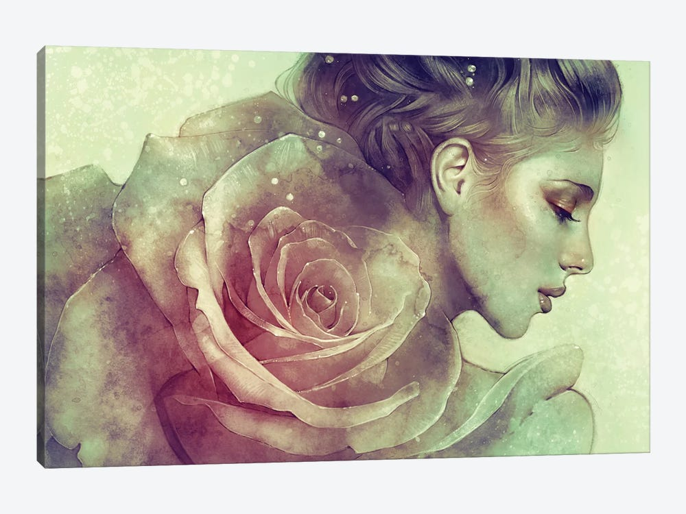 June by Anna Dittmann 1-piece Canvas Art
