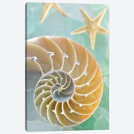 Seaglass 2 Canvas Print #ICS60} by Alan Blaustein Art Print