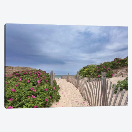 Rose Path Canvas Print #ICS622} by Katherine Gendreau Canvas Artwork