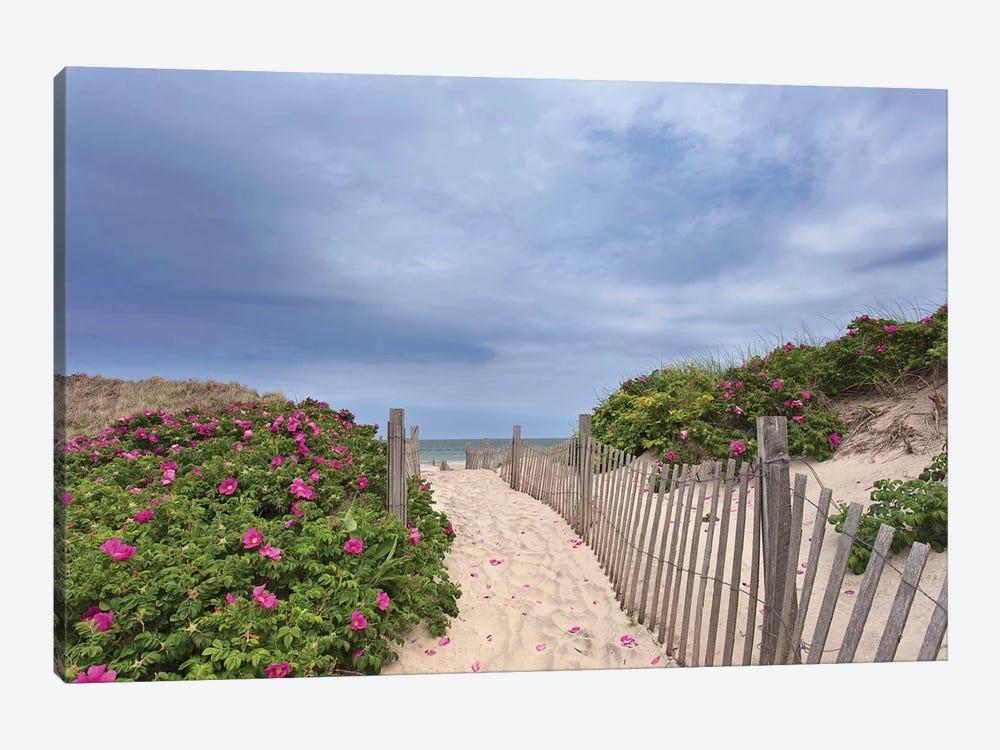 Rose Path by Katherine Gendreau 1-piece Canvas Art