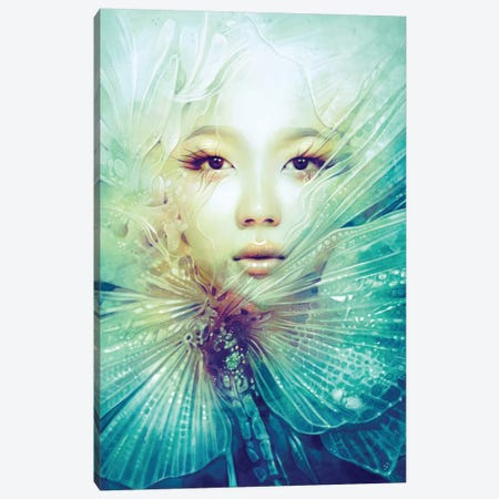 Locust Canvas Print #ICS629} by Anna Dittmann Canvas Artwork