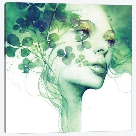 Serendipity Canvas Print #ICS631} by Anna Dittmann Canvas Print