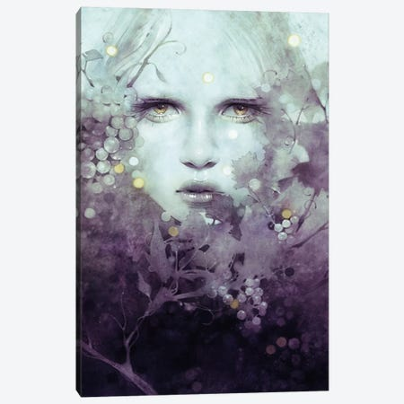 Vine Canvas Print #ICS632} by Anna Dittmann Canvas Art Print