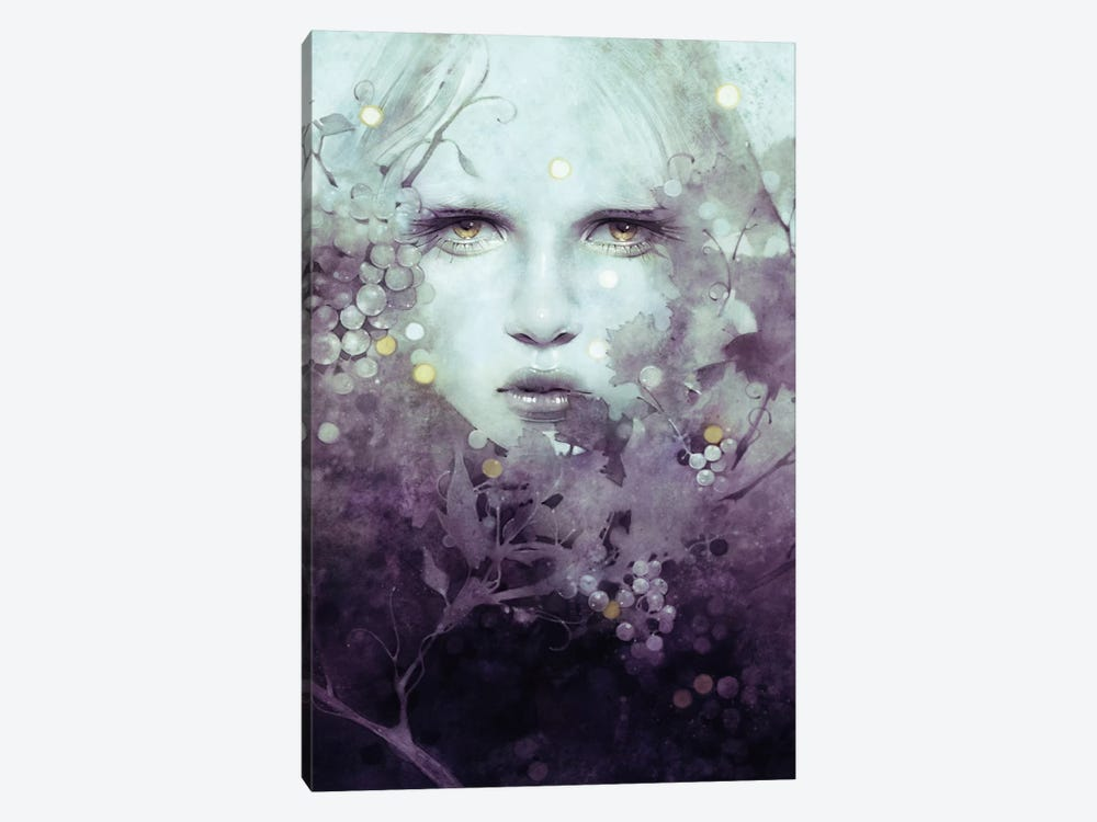 Vine by Anna Dittmann 1-piece Canvas Art Print