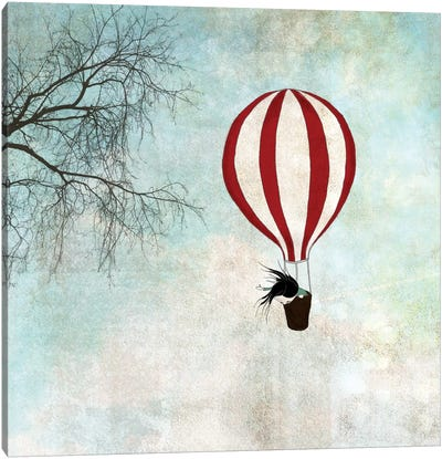 Up In The Air Canvas Print #ICS641