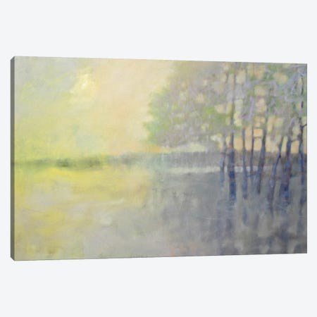 Spring Flood Canvas Print #ICS645} by Pam Hassler Art Print