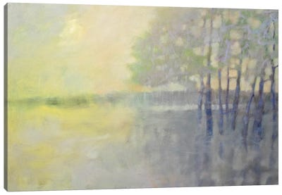 Spring Flood Canvas Art Print