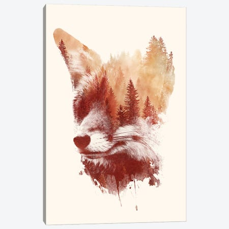 Blind Fox Canvas Print #ICS647} by Robert Farkas Canvas Print