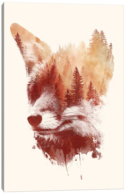 Blind Fox Canvas Art Print