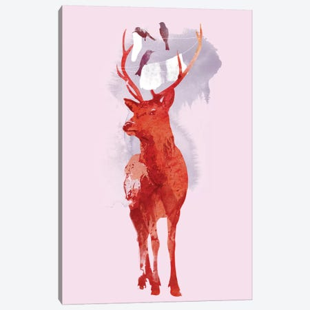 Useless Deer Canvas Print #ICS652} by Robert Farkas Canvas Print