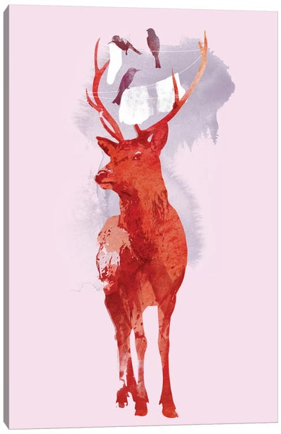 Useless Deer Canvas Art Print