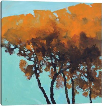 Five Trees Canvas Art Print