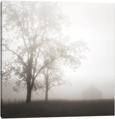 Farmland, Appalachia, 2013 Canvas Art Print