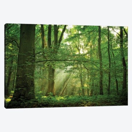 Breathe Canvas Print #ICS671} by Lars van de Goor Art Print