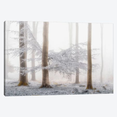 Lishka Canvas Print #ICS672} by Lars van de Goor Canvas Print