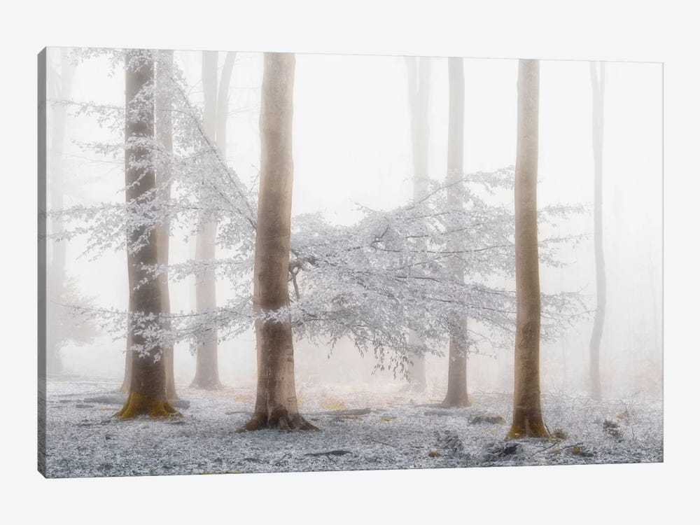 Lishka by Lars van de Goor 1-piece Canvas Print