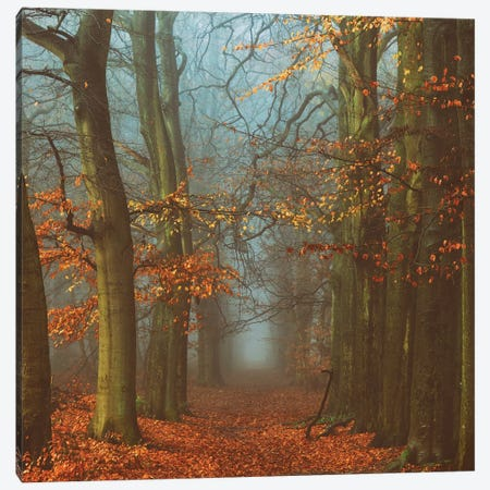 Path Of The Mystics Canvas Print #ICS675} by Lars van de Goor Canvas Art