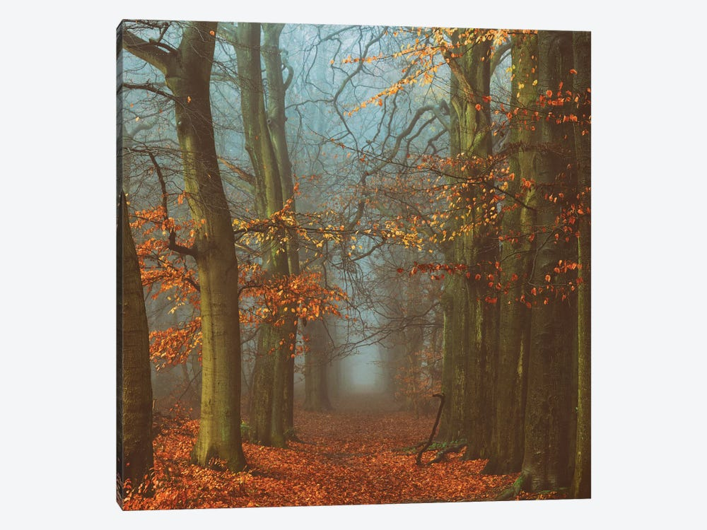 Path Of The Mystics by Lars van de Goor 1-piece Canvas Artwork
