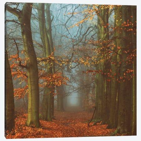 Path Of The Mystics Canvas Print #ICS675} by Lars van de Goor Canvas Art