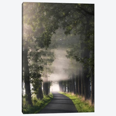 Rays Of Fog Canvas Print #ICS676} by Lars van de Goor Canvas Art