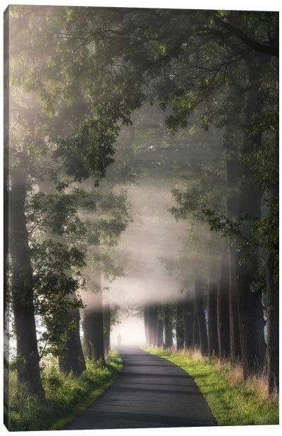 Rays Of Fog Canvas Art Print